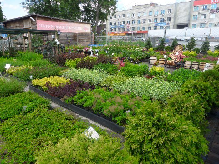 Все для вашего сада и огорода